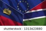 lichtenstein and gambia 3d...   Shutterstock . vector #1313623880