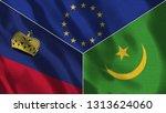 lichtenstein and mauritania 3d...   Shutterstock . vector #1313624060