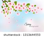 spring nature background with a ... | Shutterstock .eps vector #1313644553