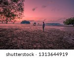 the background of the twilight... | Shutterstock . vector #1313644919