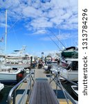 key west  florida   february 28 ... | Shutterstock . vector #1313784296