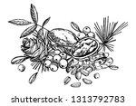 cashew nuts  hazelnut  pine... | Shutterstock . vector #1313792783