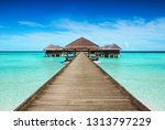 Small photo of Hotel with landing stage at the seychelles,mauritius or maldives. Concept for a vacation in luxury.