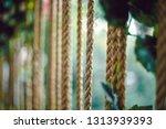 rings beloved dear people | Shutterstock . vector #1313939393