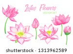 pink lotus flowers vector set ... | Shutterstock .eps vector #1313962589