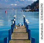 birds on a dock lake | Shutterstock . vector #1314060290