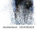 dust splash cloud isolated on... | Shutterstock . vector #1314181613