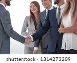 business meeting business... | Shutterstock . vector #1314273209
