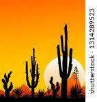 sunset in the mexican desert.... | Shutterstock .eps vector #1314289523