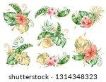 tropical set watercolor flowers ... | Shutterstock . vector #1314348323