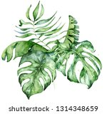 tropical watercolor flowers and ... | Shutterstock . vector #1314348659