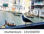 venice | Shutterstock . vector #131436050
