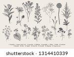 set summer flowers. classical... | Shutterstock .eps vector #1314410339