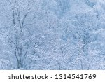 winter snowing  branches with... | Shutterstock . vector #1314541769