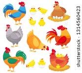 cute domestic chicken. farm... | Shutterstock .eps vector #1314560423