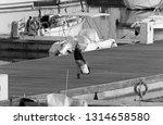 italy  sicily  mediterranean... | Shutterstock . vector #1314658580