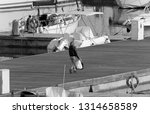 italy  sicily  mediterranean... | Shutterstock . vector #1314658589