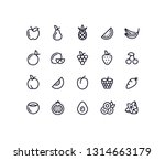 fruit outline icons | Shutterstock .eps vector #1314663179