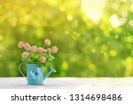 bouquet of pink clover in blue... | Shutterstock . vector #1314698486
