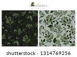 botanic  illustration of nature ...   Shutterstock .eps vector #1314769256