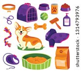 Stock vector pet shop icons set dog goods vector cartoon illustration animal food toys care and other stuff 1314793976