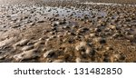 Closeup Of The Small Heaps Of...