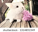 bunny next to flowers | Shutterstock . vector #1314851549