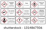 the globally harmonized system... | Shutterstock .eps vector #1314867506