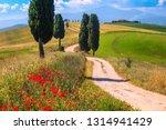 Spectacular Tuscany Summer...