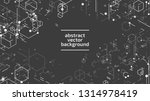 vector abstract boxes... | Shutterstock .eps vector #1314978419