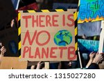 protestors holding climate... | Shutterstock . vector #1315027280