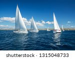 sailing yachts regatta... | Shutterstock . vector #1315048733