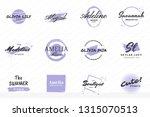 feminine vintage retro vector... | Shutterstock .eps vector #1315070513