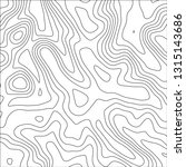 topographic map background.... | Shutterstock .eps vector #1315143686