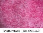 texture of shaggy fur. | Shutterstock . vector #1315238660
