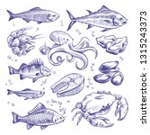 seafoods hand drawn. sea fishes ... | Shutterstock .eps vector #1315243373