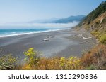 black sands beach at the... | Shutterstock . vector #1315290836
