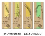 vector set of cereal labels... | Shutterstock .eps vector #1315295330