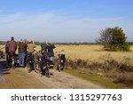 mierlo  the netherlands  ... | Shutterstock . vector #1315297763