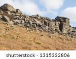 gritstone outcrops of rock in... | Shutterstock . vector #1315332806