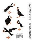 arctic puffins. vector... | Shutterstock .eps vector #1315352399