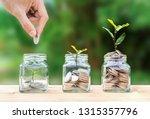 money savings  investment ... | Shutterstock . vector #1315357796