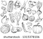 collection of hand drawn...   Shutterstock .eps vector #1315378106