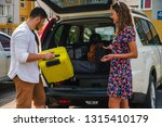 couple put bags in car trunk.... | Shutterstock . vector #1315410179