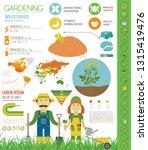 mustard beneficial features... | Shutterstock .eps vector #1315419476