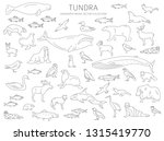 tundra biome. simple line style.... | Shutterstock .eps vector #1315419770