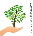 tree with green leaves in hand... | Shutterstock .eps vector #1315446470