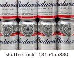 st. paul  mn usa   february 16  ...   Shutterstock . vector #1315455830