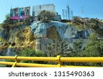 mexico city  df mexico may 10 ... | Shutterstock . vector #1315490363