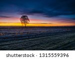 beautiful sunrise over the... | Shutterstock . vector #1315559396